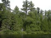 ESTATE SIZED LOT ON THE MUSKOKA RIVER