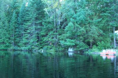 Main picture for listing #511 - LOT ON DICKIE LAKE