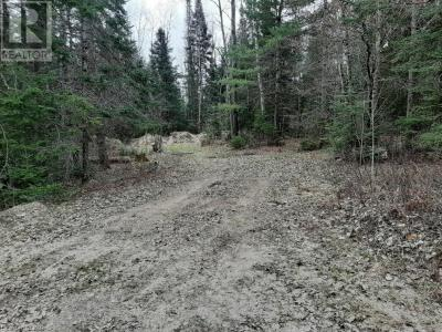 Main picture for listing #576 - 00 PAINT LAKE ROAD, BAYSVILLE